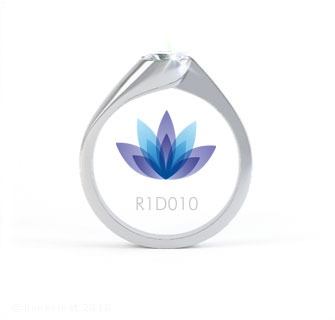 R1D010 product image