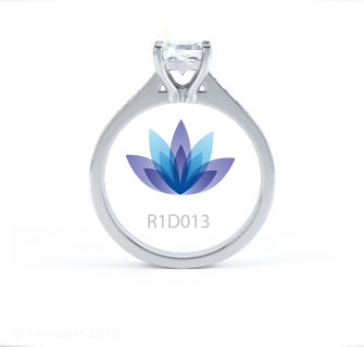 R1D013 product image
