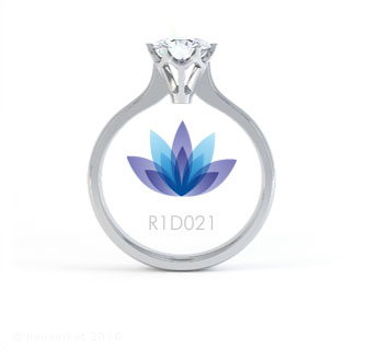 R1D021 product image