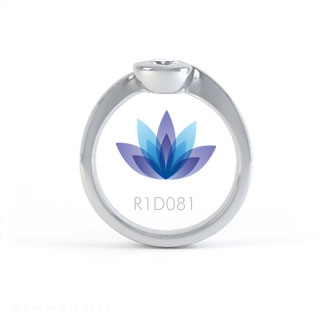 R1D081 product image