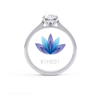 R1H031 product image