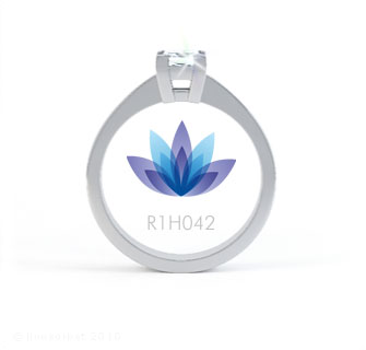R1H042 product image