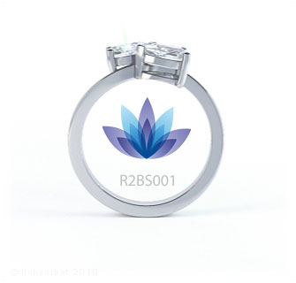 R2BS001 product image
