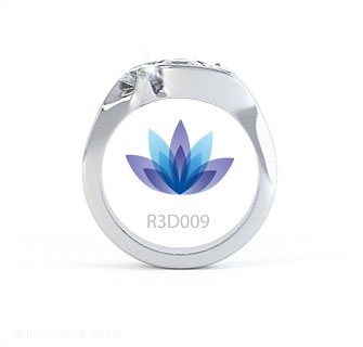 R3D009 product image