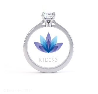 R1D093 product image